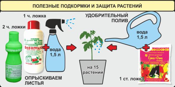 Выращивание томатов. Подкормки и защита от болезней